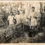My father, F Shankar Alva (right) with Game, a Bison. Jeypore, Koraput (now Orissa) 1928