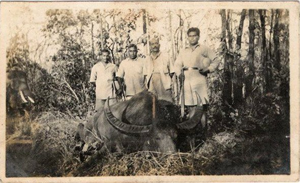 The Forest Ranger of Jeypore, Orissa